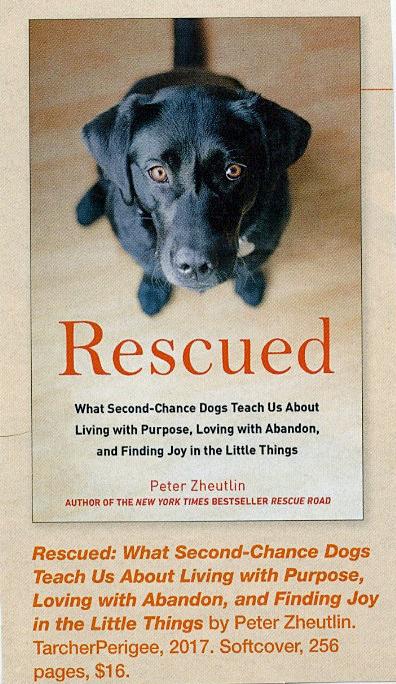Rescue Book